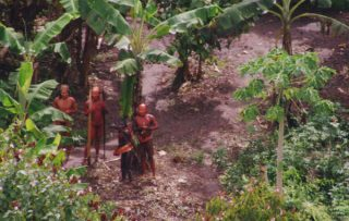 uncontacted-footage-thumb-01_article_column